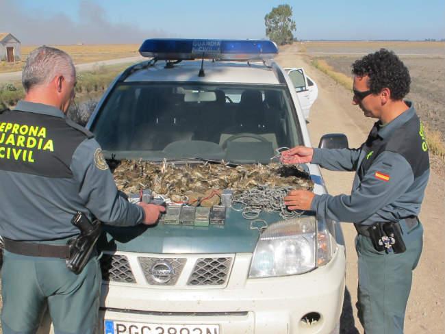 guardia-civil-aves