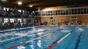 piscina-alcores-1