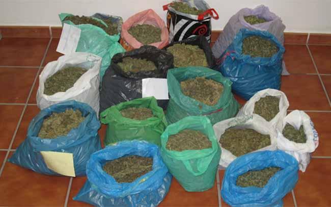 bolsitas-marihuana-marchena-guardia-civil