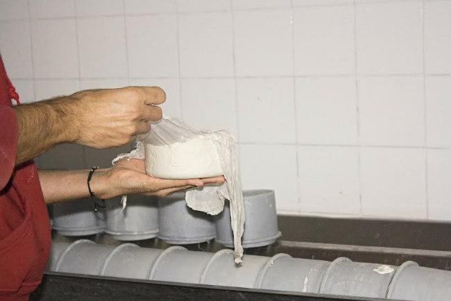 queso-montes-granadinos