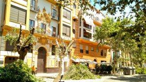 Árboles talados en la Avenida de Cádiz /Participa Sevilla
