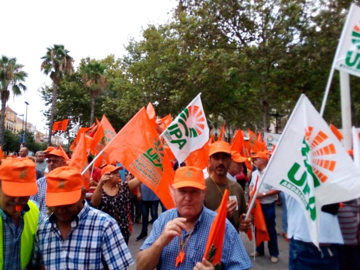 Protesta por la aceituna de mesa /@UPA_Federal