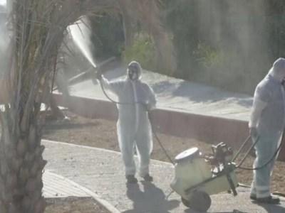 Fumigación contra el virus del Nilo en La Puebla del Río / Ayto.