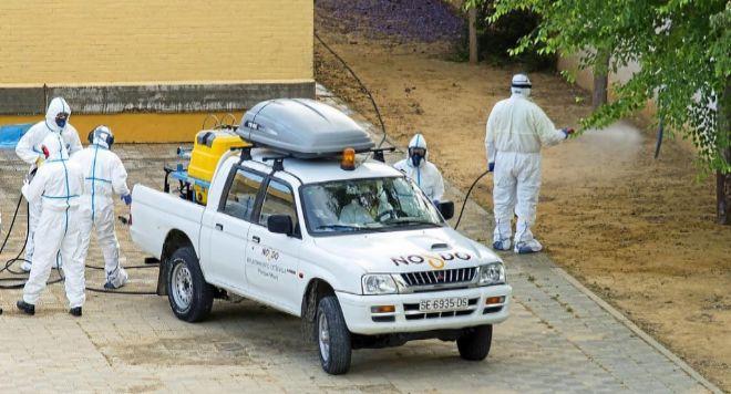Actuación del Zoosanitario contra las ratas.