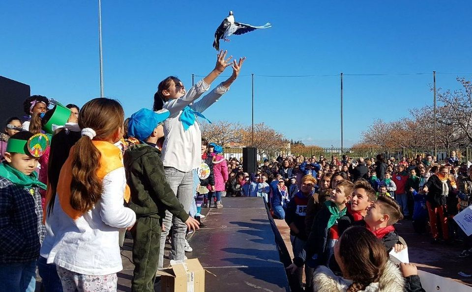 Día de la Paz Torreblanca