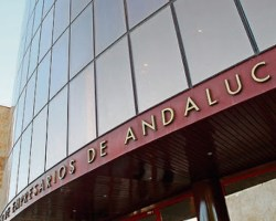 Los empresarios andaluces se sienten criminalizados por el Gobierno
