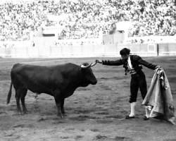 Homenaje a Joselito en La Monumental de Sevilla