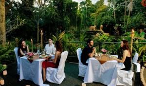 Sewa Mobil Di Bali - Bali Zoo Dinner