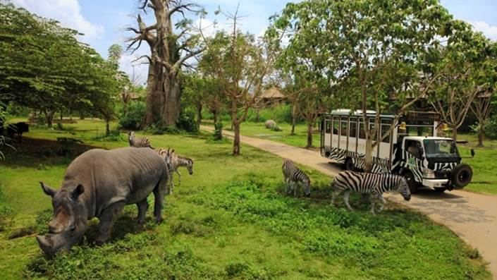 Bali Safari & Marine Park Harga Tiket Masuk Domestik 1