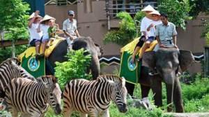 Bali Safari & Marine Park Harga Tiket Masuk Domestik 8