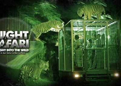 Bali Safari & Marine Park Harga Tiket Masuk Domestik 9