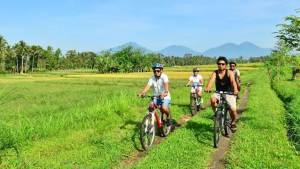 Cycling di Bali Jalur Kintamani Menuju Ubud Feature Image
