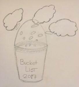Bucket list 2017 goal settings