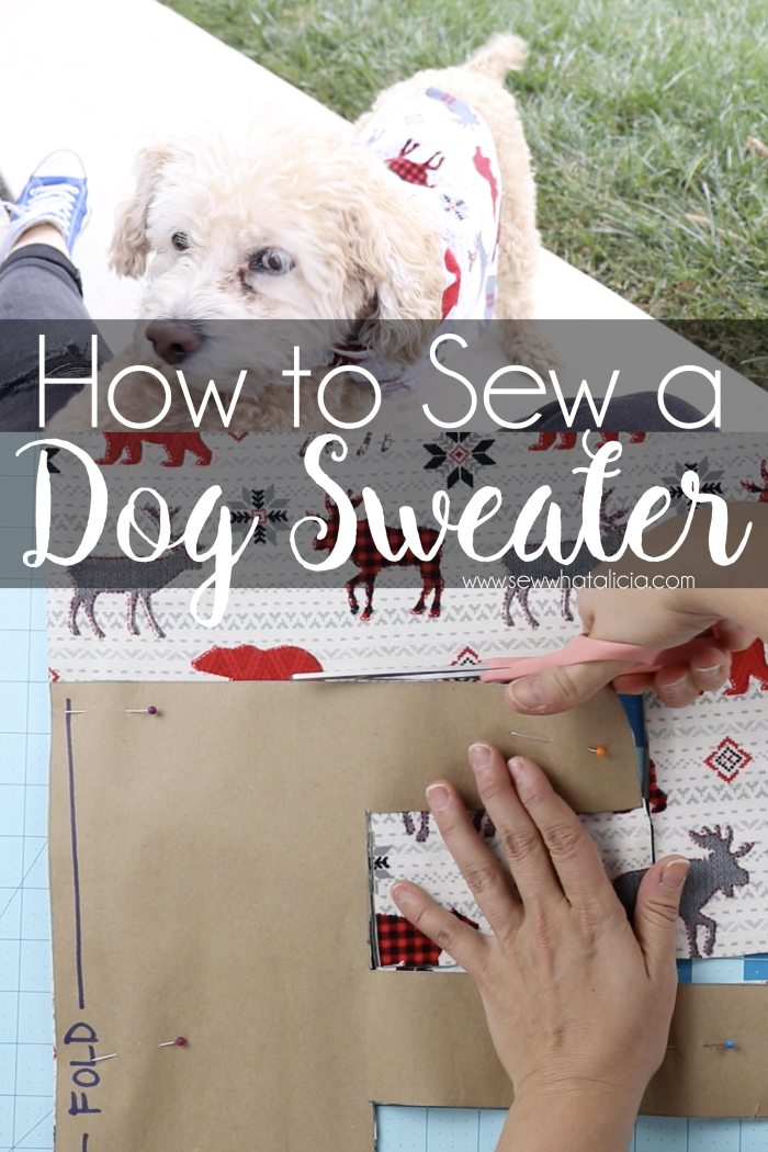 Image with text overlay that reads how to sew a dog sweater.