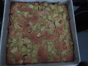 one bowl rhubarb squares
