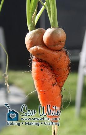 Sew White hugging carrots