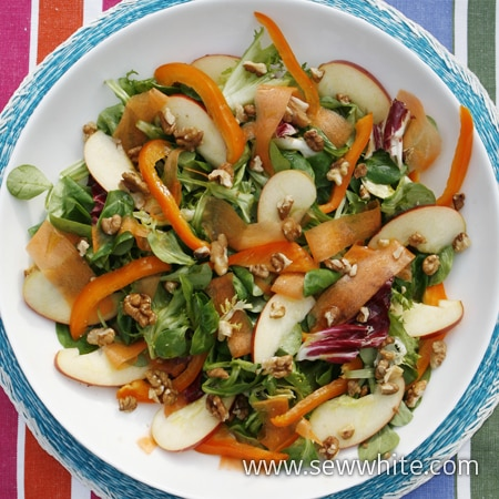 Sew White summer apple and carrot salad 1