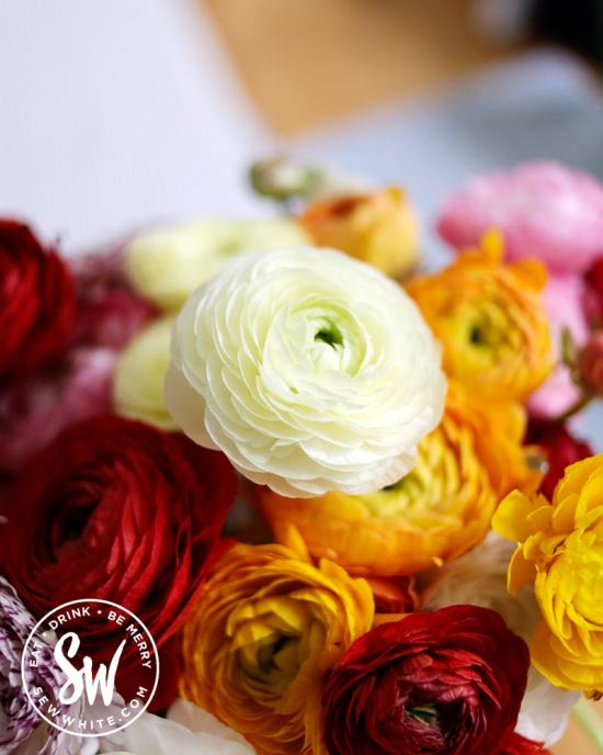 By Bloom close of ranunculus in the Be Merry Gift Guide