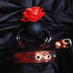 Toy Review – The Full Bloom Ball Gag by XR Brands