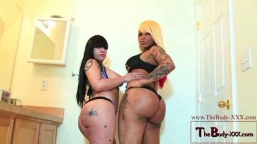 THE BODY XXX & XTACY