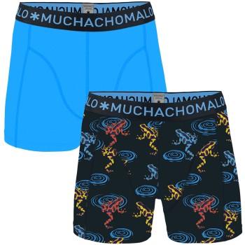 Muchachomalo 2-pack Cotton Frog Boxer * Kampanj *