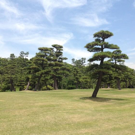 İmparatorluk Sarayı Bahçesi