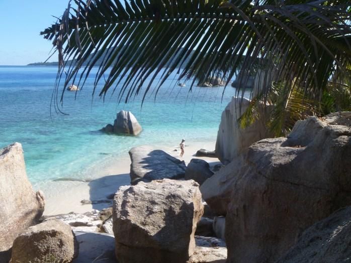 Boat Trips Seychelles Coco Island
