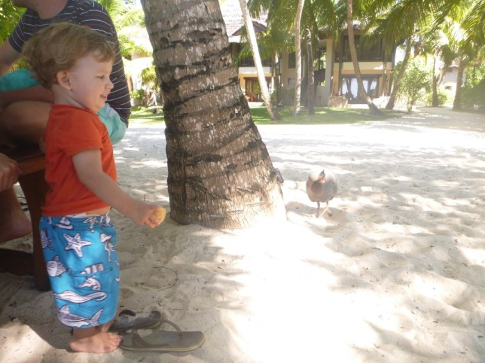 Lunch at Constance Lemuria Hotel with the Guinnea Fowl