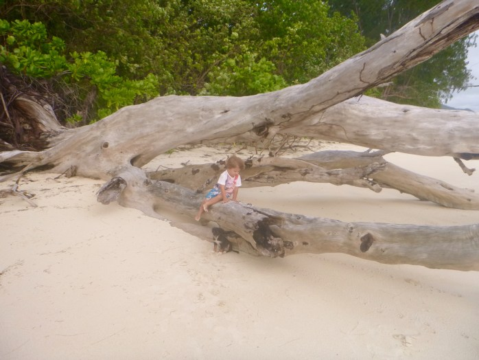 Family walk on the beach praslin seychelles