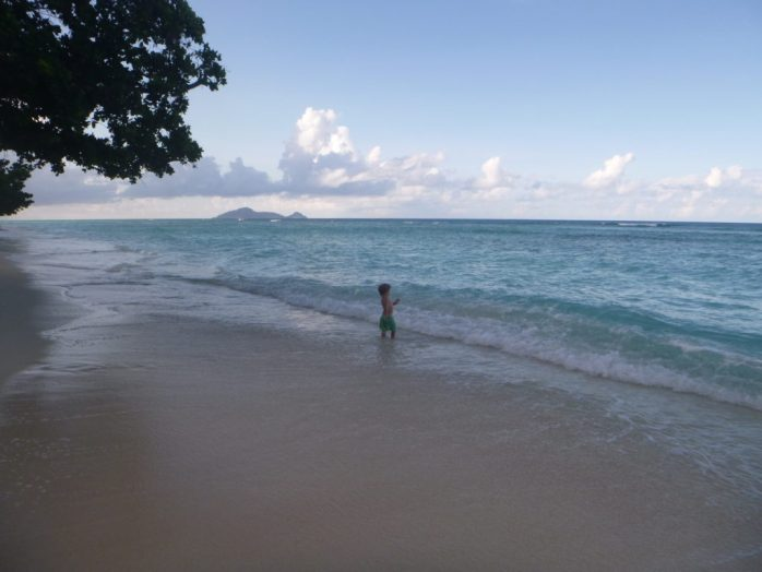 Arthur is 34 months old. Silhouette island