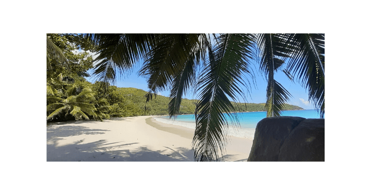 Hello Old Friend – An Update From Seychelles