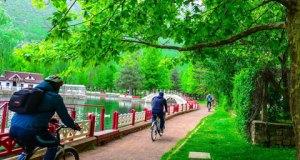 Kuğulu Park'ta Bisikletçiler