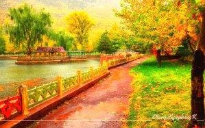 Seydişehir Kuğulu Park Sonbahar