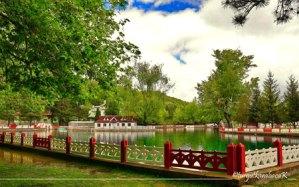 Seydişehir Kuğulu Park Yaz