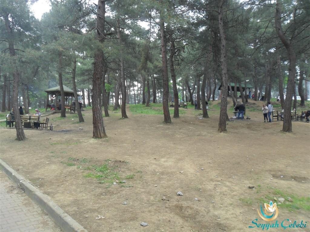 Bursa Atatürk Kent Ormanı Piknik Alanları