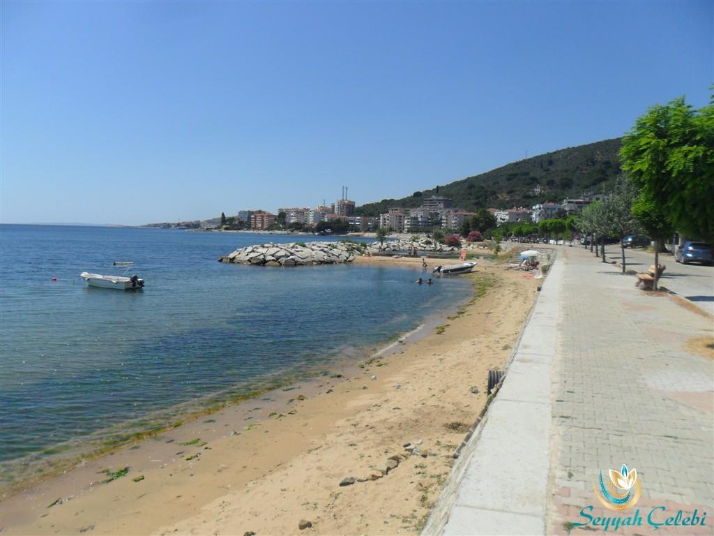 Armutlu Denizi Resim