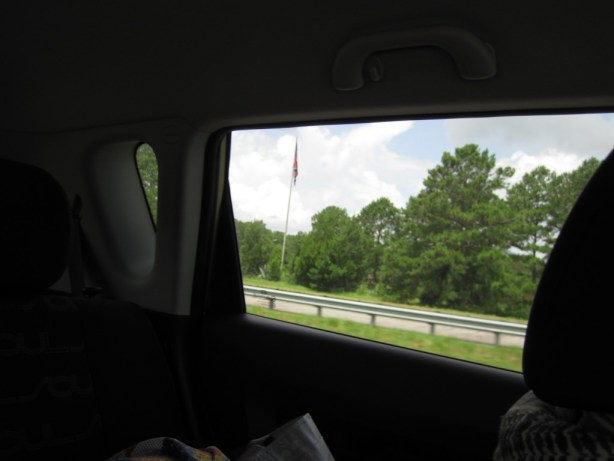 A Confederate flag flying just outside Savannah.
