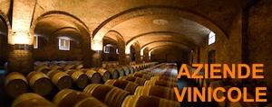 aziende-vinicole-slide