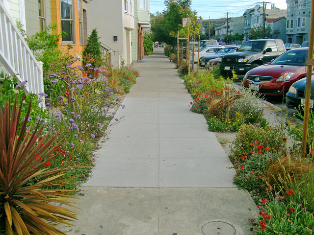 Neighborhood Residential Street