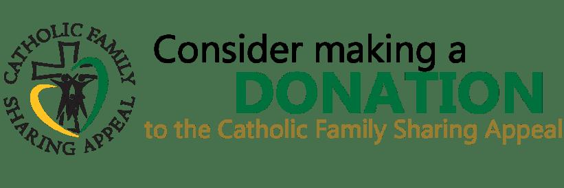 CFSA_DonationBanner