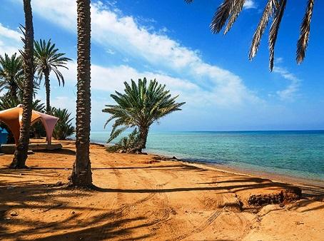 أين تقع أملج وما هي المدن القريبة من املج بالمملكة العربية السعودية دليل ابيض السياحى