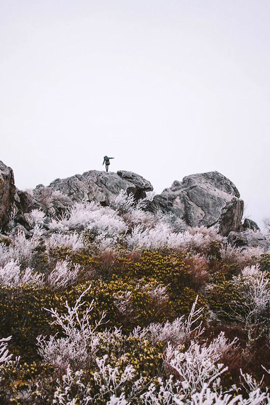climber atop large rocks and blooms below via foxes & feathers / sfgirlbybay