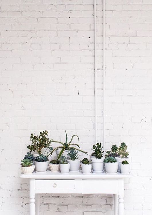 white brick wall with white potted succulants via leslie shewring's studio via decor8. / sfgirlbybay