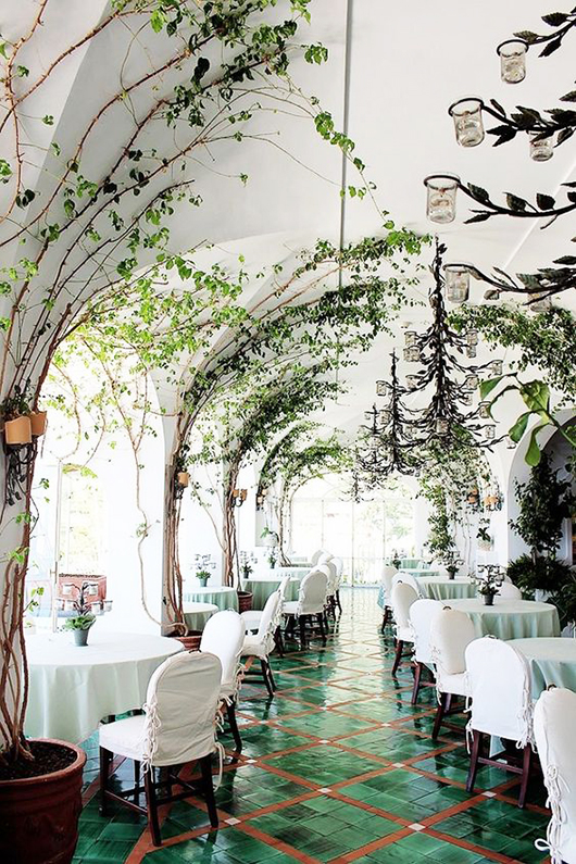 green vines growing up white walls in restaurant via tuula vintage. / sfgirlbybay