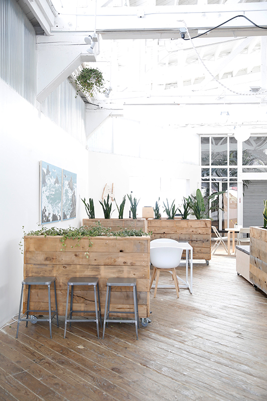 indoor planters at creative co-working space mod. / sfgirlbybay