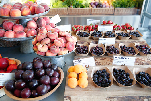 healdsburg shed fruit stand in sonoma's wine country / sfgirlbybay
