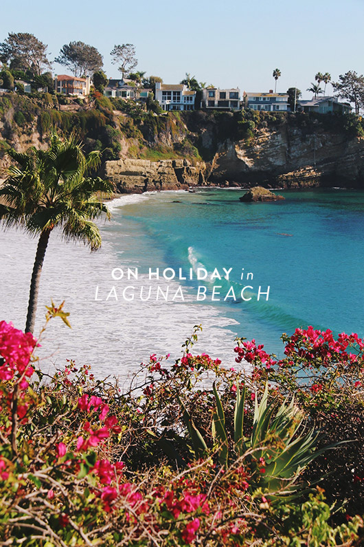 lush lanscape at laguna beach in california / sfgirlbybay