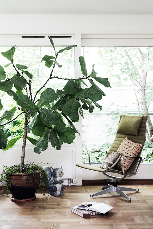 sun room with green chair and fiddle leaf fig tree / sfgirlbybay