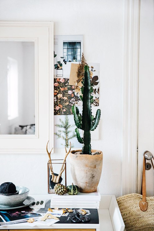 white walls and art prints behind potted cacti in modern entryway / sfgirlbybay