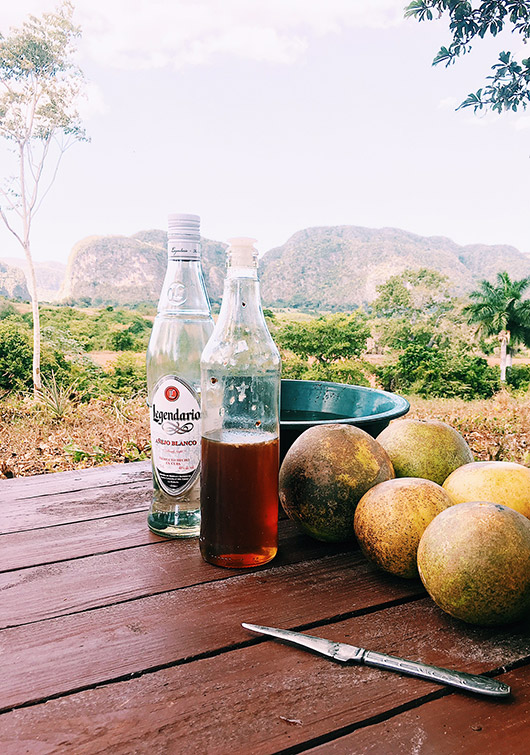 cuban beverages and fruit. / sfgirlbybay